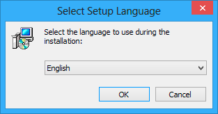 Select setup language window